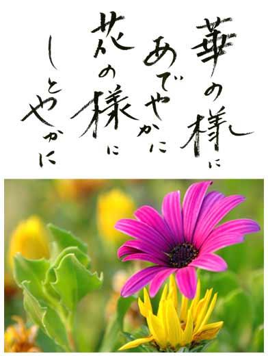 華の様にあでやかに 花の様にしとやかに